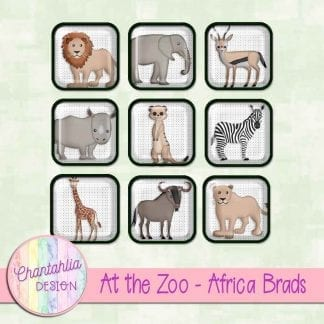 Free brads in an At the Zoo - Africa theme