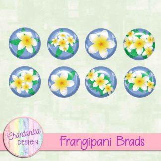 Free brads in a Frangipani theme