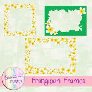 Free frame overlays in a Frangipani theme