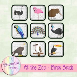 Free digital brads in an At the Zoo - Birds theme.