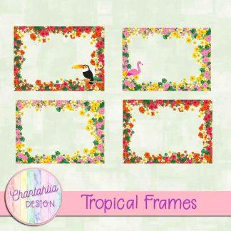 Free digital frames in a Tropical theme.