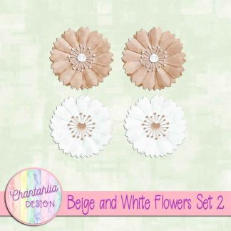 Free beige and white flowers design elements